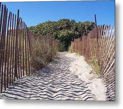 Path To Pleasure Metal Print