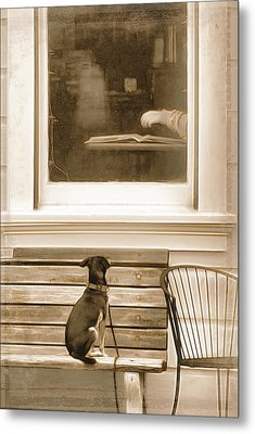 Patiently Waiting Metal Print by Rich Beer