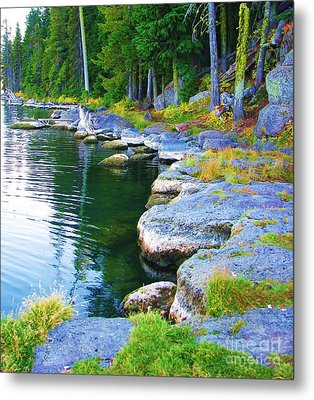 Metal Print featuring the photograph Paulina Lake Shore by Michele Penner