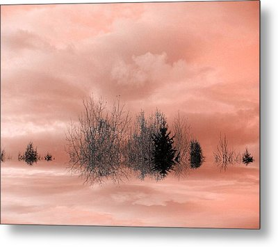 Metal Print featuring the photograph Peace by Elfriede Fulda