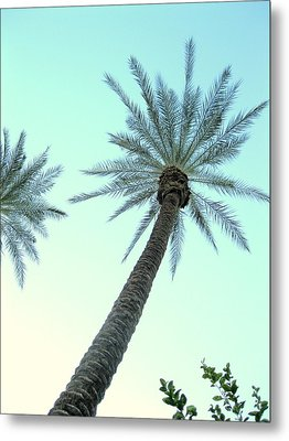 Peaceful Palms Metal Print