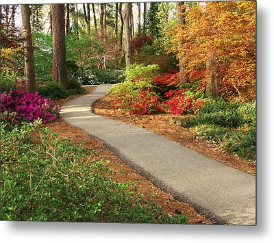 Peaceful Path Metal Print