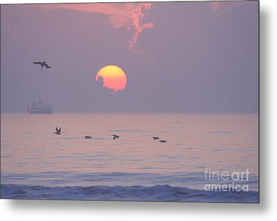 Peaceful Sunrise Metal Print by Clint Day