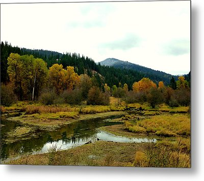 Metal Print featuring the photograph Peaceful Waters Near Coeur D'alene by Cindy Wright