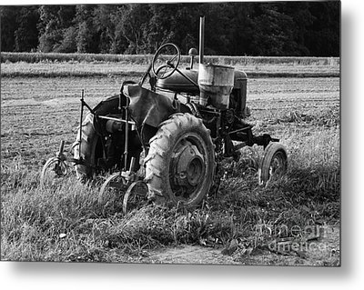 Metal Print featuring the photograph Peach Glen Pennsylvania 2 by Tony Cooper