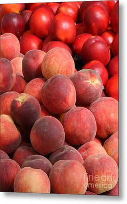 Peaches And Nectarines Metal Print by Carol Groenen