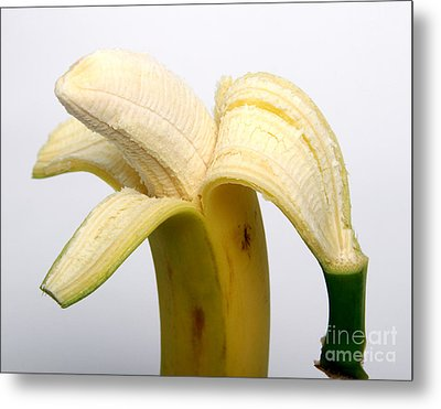Peeled Banana Metal Print by Photo Researchers, Inc.