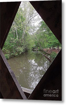 Metal Print featuring the photograph Peering Out by Renee Trenholm