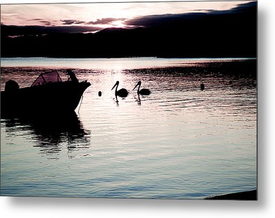 Metal Print featuring the photograph Pelican Boat. by Carole Hinding