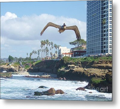 Metal Print featuring the photograph Pelican Flight by Jasna Gopic