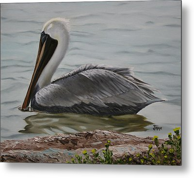 Metal Print featuring the painting Pelican Swim by Jimmie Bartlett