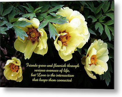 Peony Friends Metal Print by Deborah  Crew-Johnson