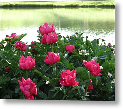 Metal Print featuring the photograph Peony Lake Reflections  by Rebecca Overton