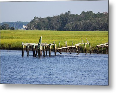 Perch Metal Print by Tanya Chesnell