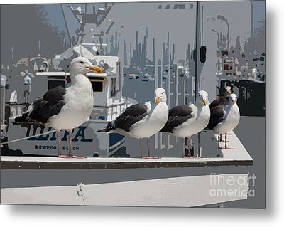 Metal Print featuring the photograph Perched Seagulls by Sonny Marcyan