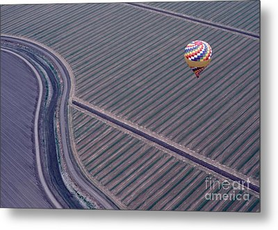 Perfect Proposition Metal Print by Terry Toland