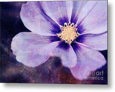 Petaline - 06bt04b Metal Print by Variance Collections