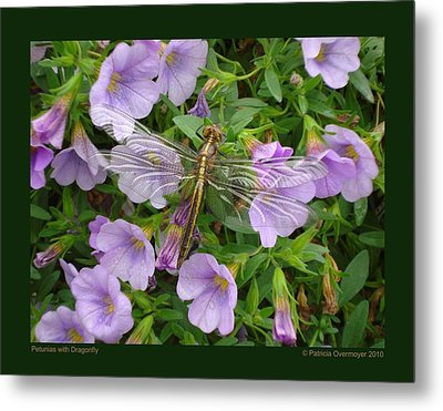 Petunias With Dragonfly Metal Print by Patricia Overmoyer