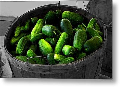Pickling Cucumbers Metal Print by Ms Judi