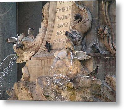 Pigeons Playtime Metal Print by Valia Bradshaw