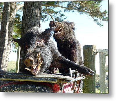 Piggy Back Smiley Hitch Hikers Metal Print by Dianne  Connolly
