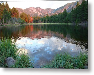 Pine Valley's Tranquility Metal Print