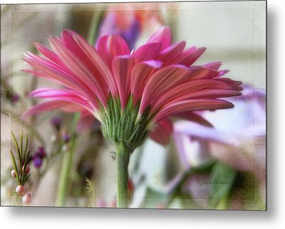 Metal Print featuring the photograph Pink Beauty by Joan Bertucci