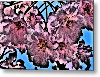 Pink Cherry - Black On Blue Metal Print by Jen White