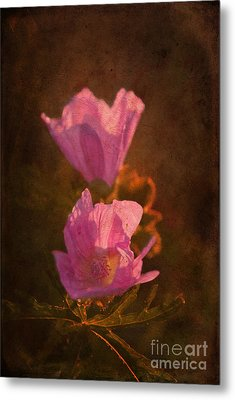 Pink Delight Metal Print by Aimelle