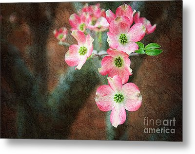 Pink Dogwood Cascade Metal Print by Andee Design