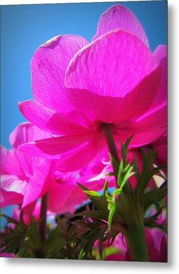 Pink Flowers In The Sky Metal Print by Eva Kondzialkiewicz