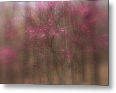 Metal Print featuring the photograph Pink Haze by Coby Cooper