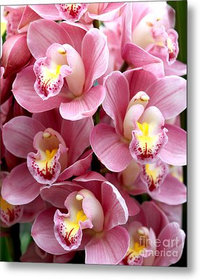 Metal Print featuring the photograph Pink Orchids by Debbie Hart