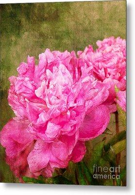 Pink Peony Texture 3 Metal Print by Bob and Nancy Kendrick
