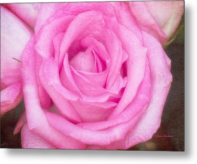 Metal Print featuring the photograph Pink Surprise by Joan Bertucci