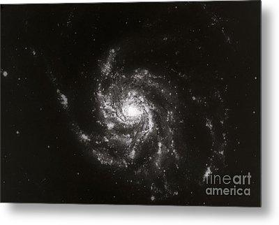 Pinwheel Galaxy, M101 Metal Print by Science Source