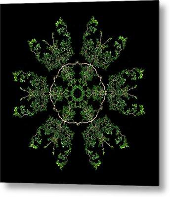 Pinwheel II Metal Print by Debra and Dave Vanderlaan