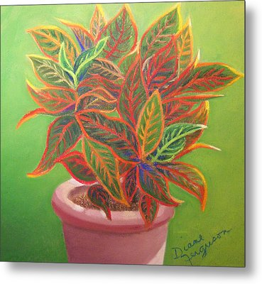 Metal Print featuring the pastel Plant Portrait II by Diane Ferguson
