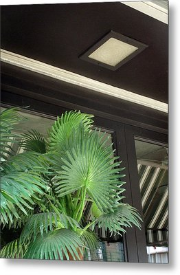 Metal Print featuring the photograph Plastic Palms And Striped Awnings by Louis Nugent
