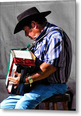Playing For Taos Metal Print by Terry Fiala