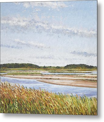 Plum Island Morning Metal Print by Meg Black