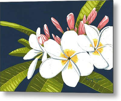 Metal Print featuring the painting Plumeria by Terry Taylor