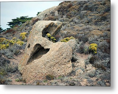 Point Lobos Smiley Face Metal Print