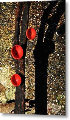 Poison Mushroom Metal Print by Vinod Nair