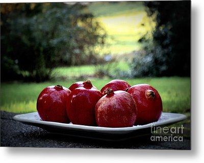Pomegranates On White Platter 3 Metal Print by Tanya  Searcy