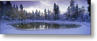 Pond And Fresh Snowfall, Near 70 Mile Metal Print by David Nunuk