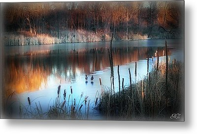 Pond Creek Metal Print by Michelle Frizzell-Thompson