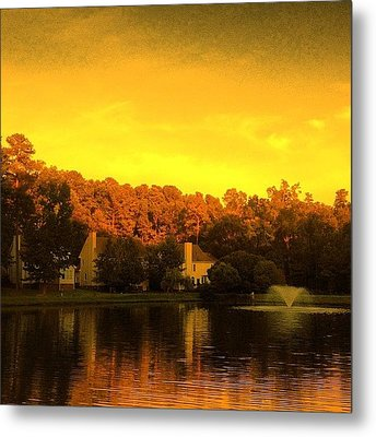 Pond Metal Print by Katie Williams