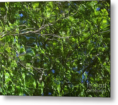 Pond Reflection 3 Metal Print by Janeen Wassink Searles