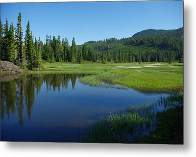 Pond Reflection Metal Print by Marilyn Wilson